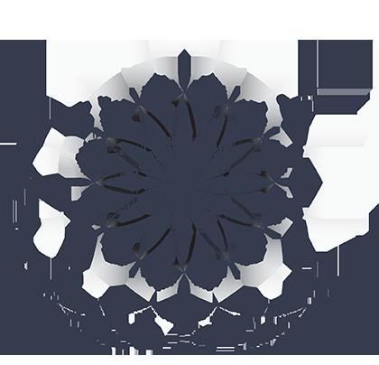 School of Life - program edukacyjny dla młodych ludzi